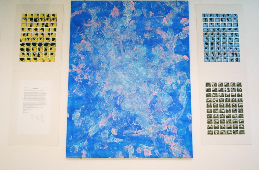 Salto Ergo Sum Gallery